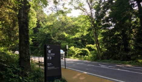 仙台城の坂道を上がった先にある物件