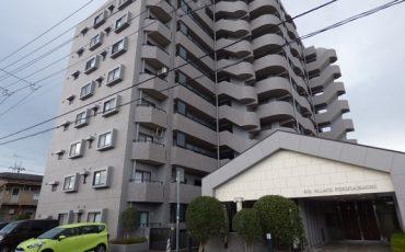仙台のスタッフブログ:365リノベ向き物件♪